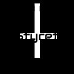 Logo_Styret